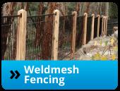 weldmesh-fencing